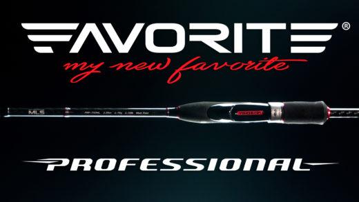 Favorite Professional New Promo